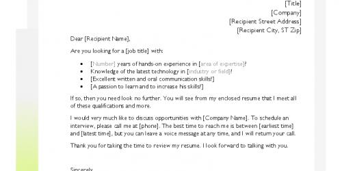 Sade ve Renkli CV Örneği