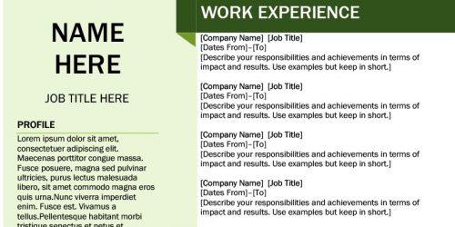 Yeşil Resimli CV Örneği